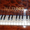 Bluthner pianos wanted - upright or grand piano